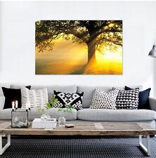 3D Tree And Sun Wall Stickers Vinyl Murals Wall Print Decal Deco Art AJ STORE AU