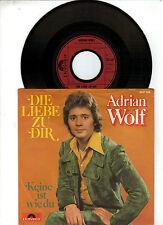 Adrian Wolf    -    Die Liebe zu dir