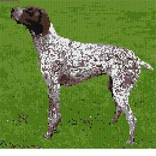 German Shorthaired Pointer Needlepoint Kit or Canvas (Dog/Animal)