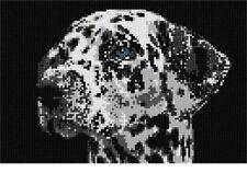 Dalmation Face Needlepoint Kit or Canvas (Dog/Animal)