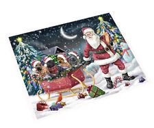 Merry 00006000  Christmas Santa Sled Shar-Pei Dogs Woven Throw Sherpa Blanket T304