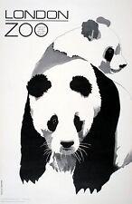 Vintage London Zoo Panda Poster A3 Print