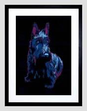 Scotty Cane Animale scozzese Black Frame Framed Art Print PICTURE Mount b12x13739
