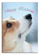 c148; Large Personalised Birthday card Custom made for any name; Welsh Corgi dog
