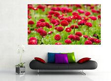 Bella Rosa Giglio Fiori Rose Verde Effetto 3D Vista Muro Adesivo Manifesto 322A