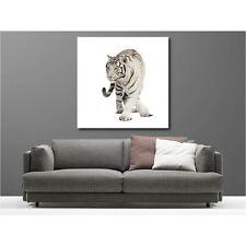 Tableaux toile déco carré tigre blanc 98142872