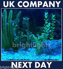 Tira De Luz Led Set Ip68 Azul Sumergible Acuario Luces Fish Tank iluminación del Reino Unido