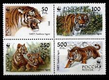 WWF  Sibirischer Tiger. 4W. Viererblock. Rußland 1993
