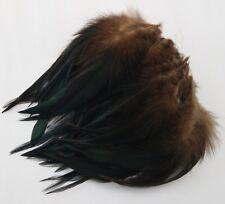 Schwarze Hahnenfedern grünschillernd,9-14 cm,für Hüte!Angelsport,ungefärbt!