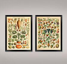 FRUIT AND VEGETABLE PRINTS: Vintage Food Posters