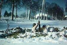 Photo WW2 - Belgique 44 - Mortier US dans les Ardennes