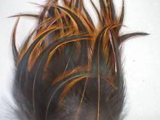 lot de 10 plumes ( cou) coq nain