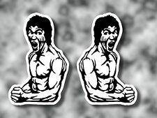 2no adesivi di Bruce Lee-Auto/Furgone/Moto/Board/Surf/Skate PARAURTI Arti Marziali