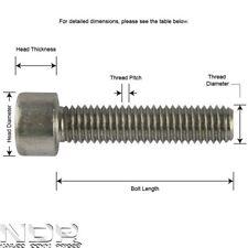 Socket Cap A2 Stainless Steel Screws/Bolts Allen/Hex Head *ALL SIZES/LENGTHS*