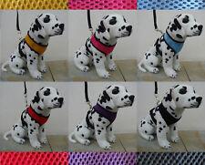 Arnés de perro + Correa  Suave Pechera para Cachorro