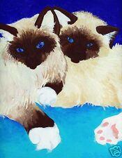 Birman Cats Kittens Cat Art Print of Painting by Vern