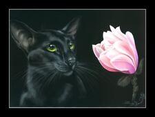 Oriental Cat and Magnolia Print by I Garmashova