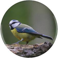 'Blue Tit' Button Pin Badges (BB008687)