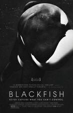 66266 Blackfish Movie Tilikum, Dave Duffus Wall Print Poster Affiche