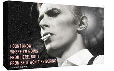 David Bowie Pop Art Splatter Paint Design Wall Art Canvas Picture Print A2 A1 A0