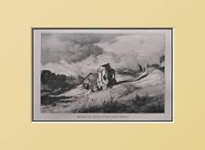 1877:SEGGIOLA del DIAVOLO_Camp.Romana.KADEN.Xilo.Etna..