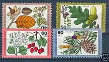 FRUTTI DI BOSCO - WILD FRUITS  R.F.T. 1979