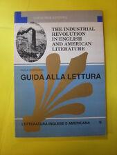 DEBERNARDI - INDUSTRIAL REVOLUTION IN ENGLISH&AMERICAN LITERATURE - ED.LOESCHER