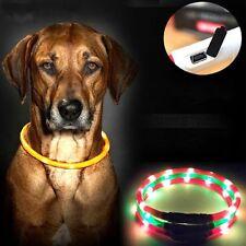 LED Halsband Visio Light Leuchthalsband Hundehalsband Leuchtschlauch USB Neu