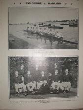 Printed photo Harvard University Rowing team 1906