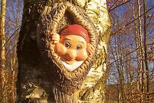 niedlicher Baum Zwerg, künstliches Astloch, Baum Deko