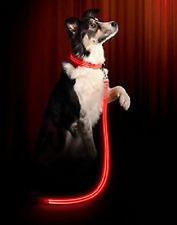 Ruff Life LED Dog Leash and Light Up Collar Premium Value Pack-US STOCK