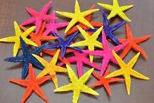 """25 PCS DYED FLAT STARFISH SEA SHELL STAR CRAFT 2"""" - 3"""" #7142"""
