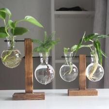 Vintage Glass Plant Bonsai Flower Vase Wooden Tray Flowers Rack Desktop  NIGH