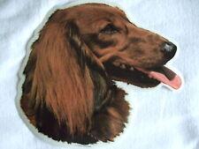 GRAND AUTOCOLLANT - motif chien  Tête TECKEL POIL LONG  N° 1