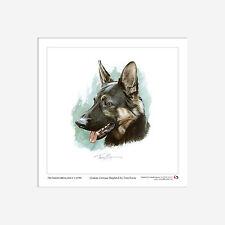Alsation (German Shepherd) - Limited Edition Print