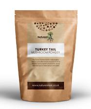 Turkey Tail Mushroom Powder - Coriolus Versicolor | Superfood | Immune Booster
