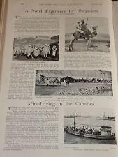 1898 ADEN TROOP WADESON CAMEL SOWAR CANARIES MINES