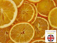 Fl Craft Dried Fruit Supplies For Ebay
