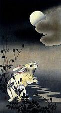 Hare and Moon 22x30 Japanese Print  Ltd. Edition Koson Asian art Japan