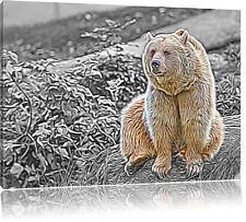 Grizzly-Bär de Piedra Negro/Blanco Foto en Lienzo Decoración de Pared