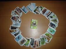 WWF Sammelbildern, Tier-Abenteuer, 15 Sticker aussuchen, REWE !!!