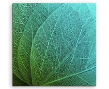 Naturfotografie –  Grüne Blätter mit Strukturen auf Leinwand