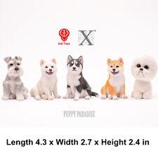BID TOYS Dog Model Husky Shiba Inu Bichon Frise Schnauzer Figure Collector Decor