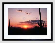 NATURA PAESAGGIO CACTUS DESERTO TUCSON Arizona SUN SET FRAMED ART PRINT b12x4051
