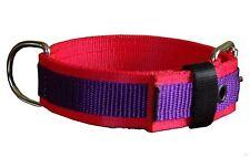4cm breites Nylonhalsband Rot / Lila  Halsband Staffordshire Bullterrier Pitbull