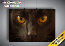 Poster Gatto Nero Occhi Oro Abbagliante Grandi tagliere