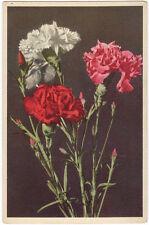 CPSM - FLEUR - Flower - Oeillets - Carnations - Nelken.