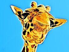POSTER XXL POP ART GIRAFFE AFRIKA TIER ZOO OKAPI SAFARI 40x30 - 120x90