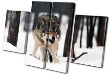 Animals White Wolf Wild MULTI TOILE murale ART Photo Print