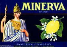 98255 Corona Riverside County Minerva Lemon Citrus Decor WALL PRINT POSTER FR